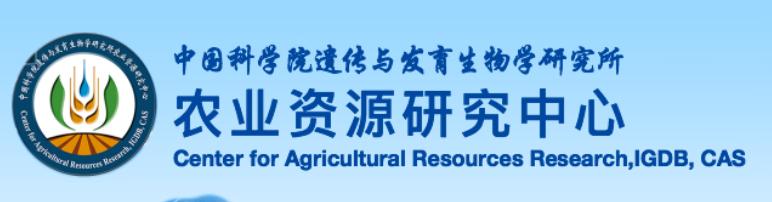 2020年中国科学院遗传发育所农业资源研究中心研究岗位招聘公